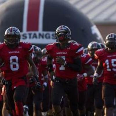 Westfield Mustang Football Campaign  profile image