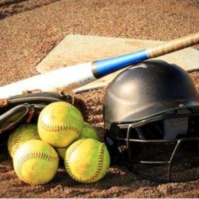 Lamar Softball profile image