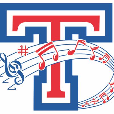Tesoro Instrumental Music profile image